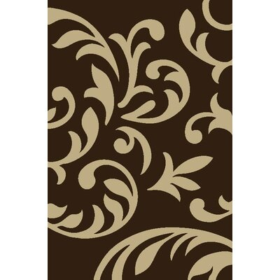 Modern Swirl Brown Area Rug Rug Size: Rectangle 53 x 73