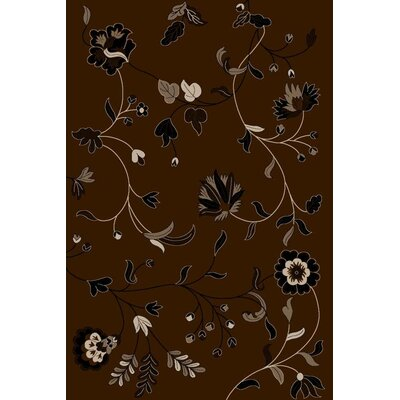 Chocolate Area Rug Rug Size: Rectangle 710 x 102