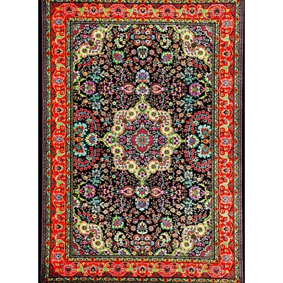 Tobis Black Indoor/Outdoor Area Rug Rug Size: 5 x 7