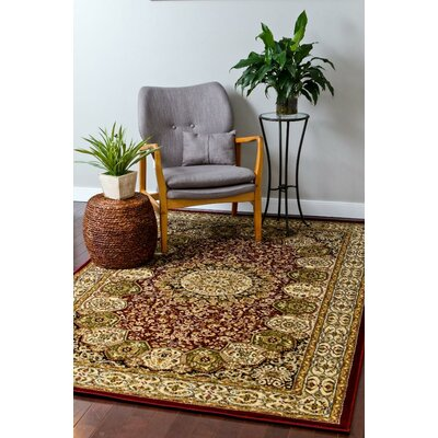 Red Area Rug Rug Size: Rectangle 9 x 12