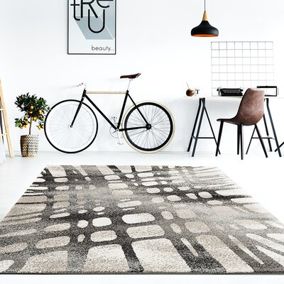 Chardae Gray Area Rug Rug Size: Rectangle 52 x 72