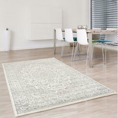 Hirano Distressed Silver Area Rug Rug Size: Rectangle 52 x 72