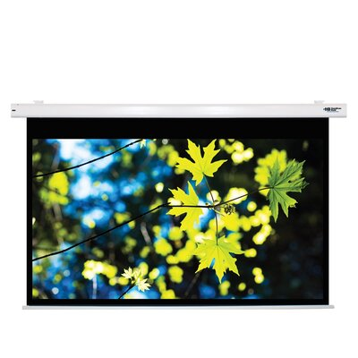Matte White Electric Projector Screen Viewing Area: 100 Diagonal