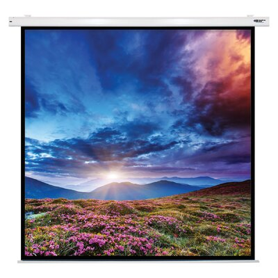 Matte White Electric Projector Screen Viewing Area: 135 Diagonal
