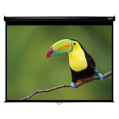 Matte White120 Diagonal Manual Projection Screen