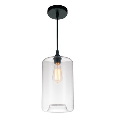 Glass 1-Light Mini Pendant  Shade Color: Clear