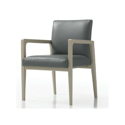 Hayden Guest Chair in Grade 3 Vinyl with Sytex Seat Support System Color: Vinyl Onyx, Finish: Natural Cherry