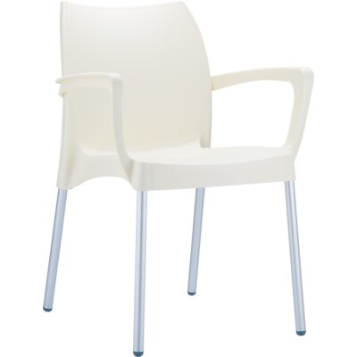 Dolce Arm Chair Finish: Beige