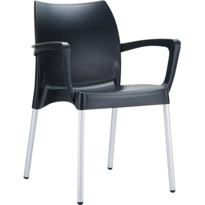 Dolce Arm Chair Finish: Black