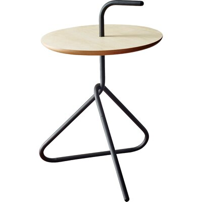 Elroy End Table Finish: Black