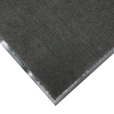 Tuff-Plush Floor Doormat Color: Charcoal, Rug Size: 3 x 4