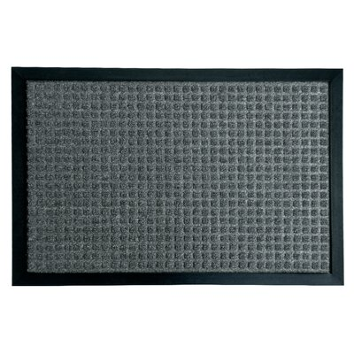Nottingham Entrance Doormat Color: Charcoal