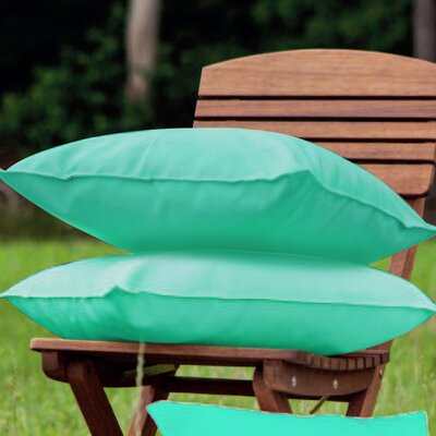Indoor/Outdoor Throw Pillow Color: Blue