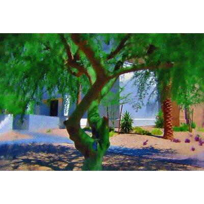 Tymeless Wonders 'Arizona Tree' Graphic Art Print Poster Size: 16