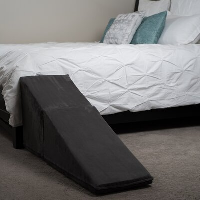 21 Pet Ramp Color: Charcoal Gray