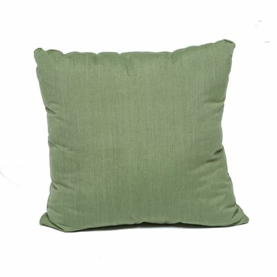 Outdoor Throw Pillow Color: Cilantro