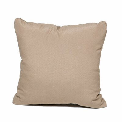 Outdoor Throw Pillow Color: Wheat