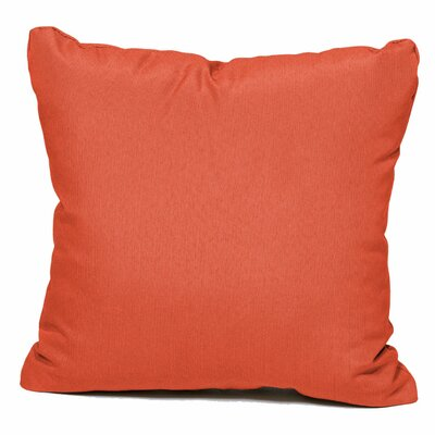 Outdoor Throw Pillow Color: Tangerine