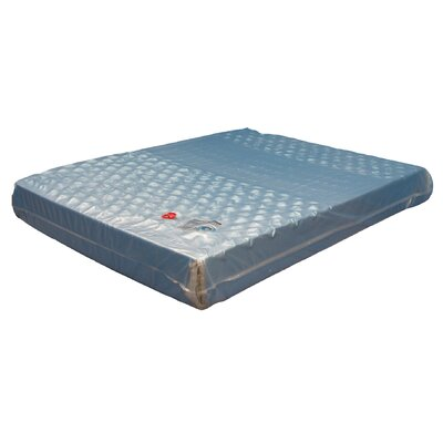 Winners American Pharoah 9 Soft-side Waterbed Mattress Size: Twin Extra Long