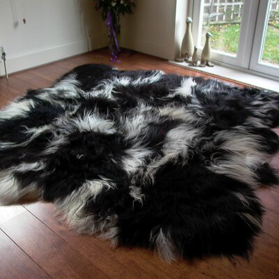Icelandic 6 Pelt Black/White Area Rug