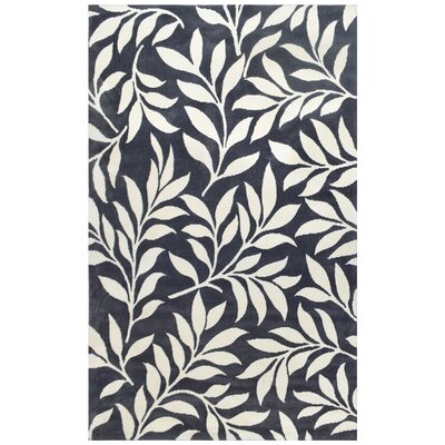 Mircoplush Dark Gray Area Rug Rug Size: 5 x 8