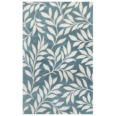 Microplush Blue Area Rug Rug Size: 5 x 8