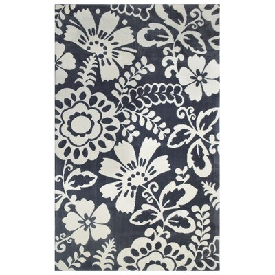 Microplush Dark Gray Area Rug Rug Size: 5 x 8