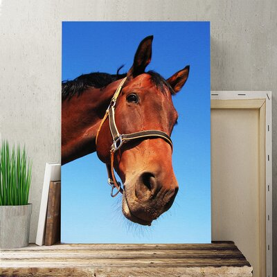 Horse Photographic Print on Canvas.