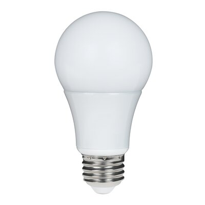 6W E26 LED Light Bulb