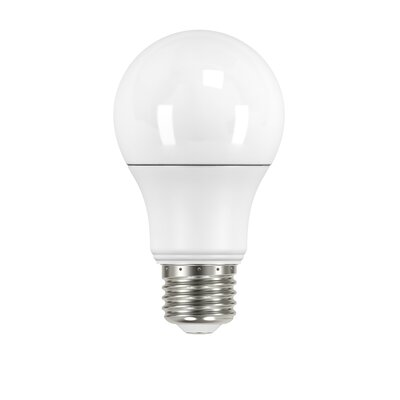 E26 LED Light Bulb Wattage: 6 Watts