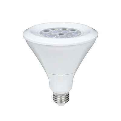 Maximus 17W (5000K) PAR38 LED Light Bulb