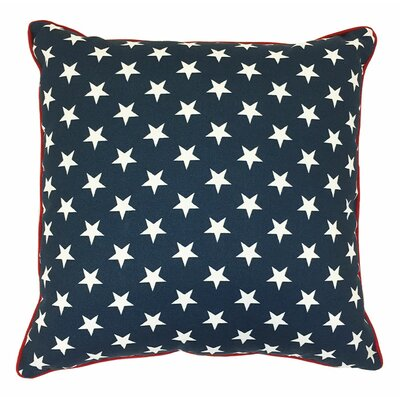 Piped Zip Outdoor Throw Pillow Size: 20 H x 20 W
