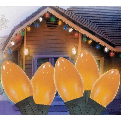 25 Light Opaque C7 Patio Christmas Light Color: Orange/Green