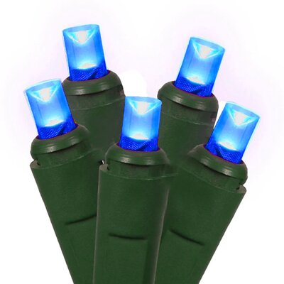 50 Commercial Wide Angle Christmas Light Color: Blue/Green