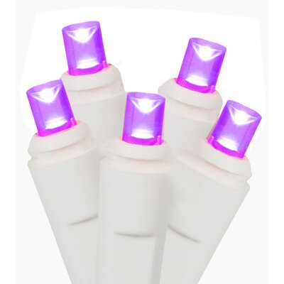 50 Commercial Wide Angle Christmas Light Color: Purple/White