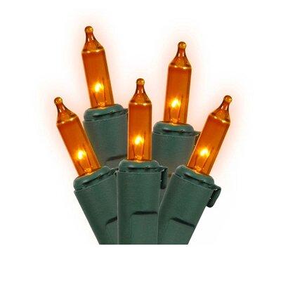 Commercial Grade Mini Christmas Light (Pack of 100) Color: Orange