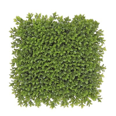 Artificial Boxwood Doormat