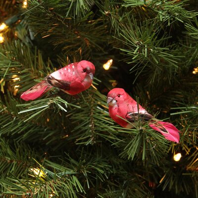 Spotted Bird Christmas Ornament JA83806