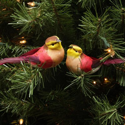 Delightful Spotted Bird Christmas Ornament