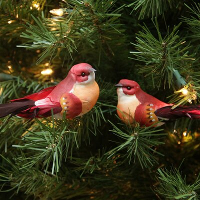 Delightful Bird Christmas Ornament JA83815