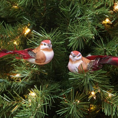 Delightful Bird Christmas Ornament JA83783