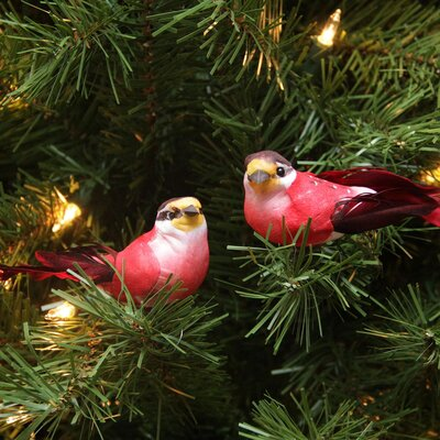 Delightful Bird Christmas Ornament JA83818