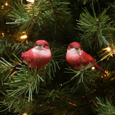 Delightful Bird Christmas Ornament JA83787