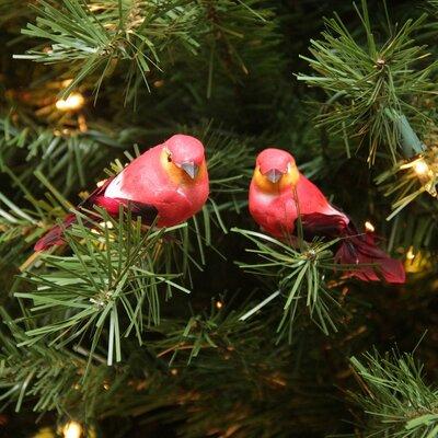 Spotted Bird Christmas Ornament JA83799
