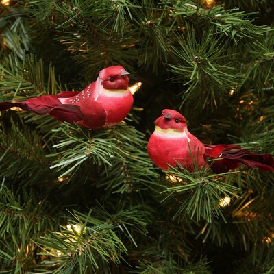 Spotted Bird Christmas Ornament JA83803