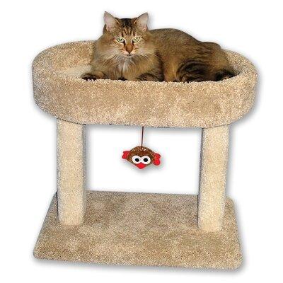 21 Kitty Cradle Cat Condo