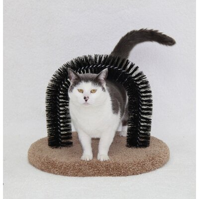 Halley Purrfect Brush