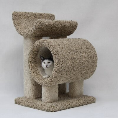 28 Kitty Cat Condo
