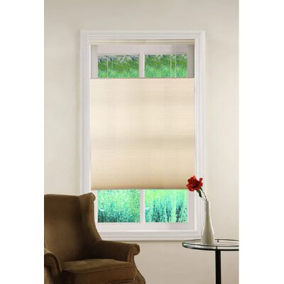 Top Down/Bottom Up Cordless Honeycomb Semi-Sheer Cellular Shade Blind Size: 23 W x 64 L, Color: Ivory
