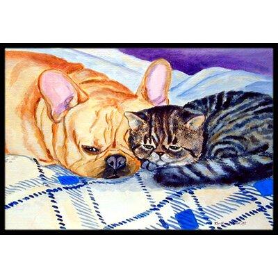 Cat Doormat Mat Size: 2 x 3